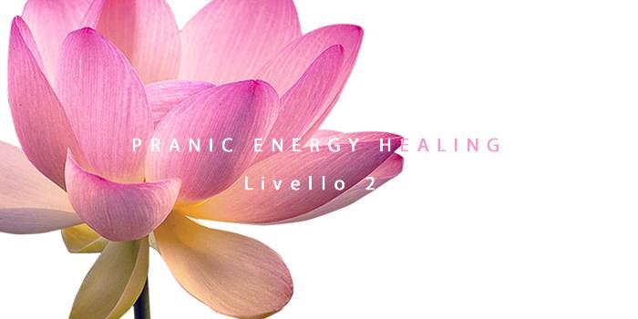 pranic_energy_healing_avanzato-freshblue