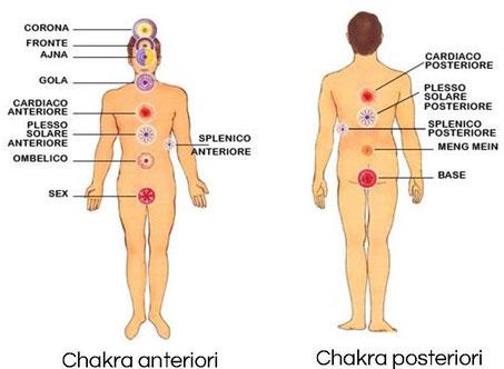 chakra-anteriori-e-chakra-posteriori-master-choa-kok-sui